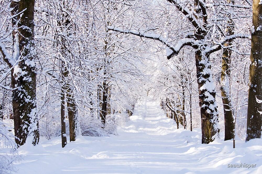 Warsaw Winter Wonderland 4 by seawhisper