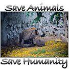 Save Animals Save Humanity by Sunil Bhardwaj