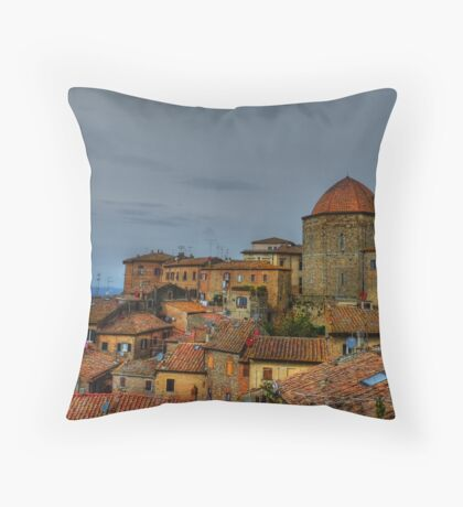 Volterra Views Throw Pillow