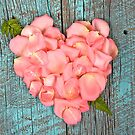 Pink rose petal heart by Maria Dryfhout