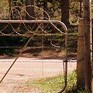 Gate-keeper by Karlientjie