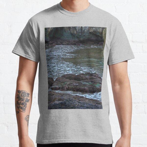 TWILIGHT ON THE OLYMPIC PENINSULA Classic T-Shirt