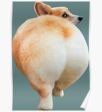 Corgi Butt Poster