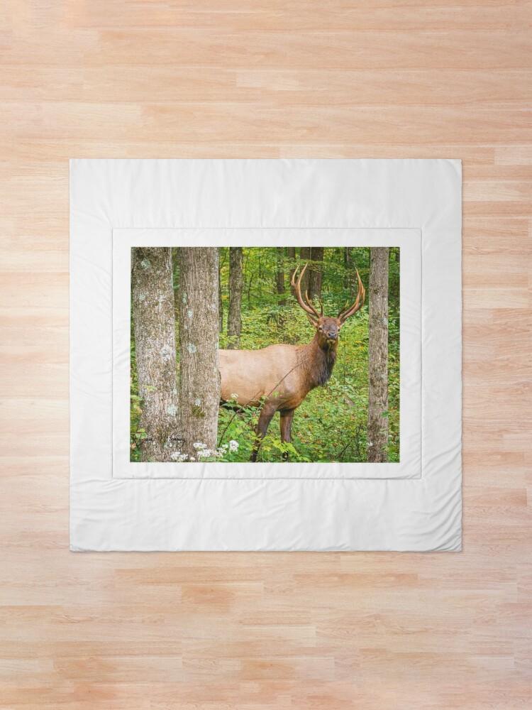 Alternate view of Adult Bull Elk in the Pennsylvania Wilds Comforter