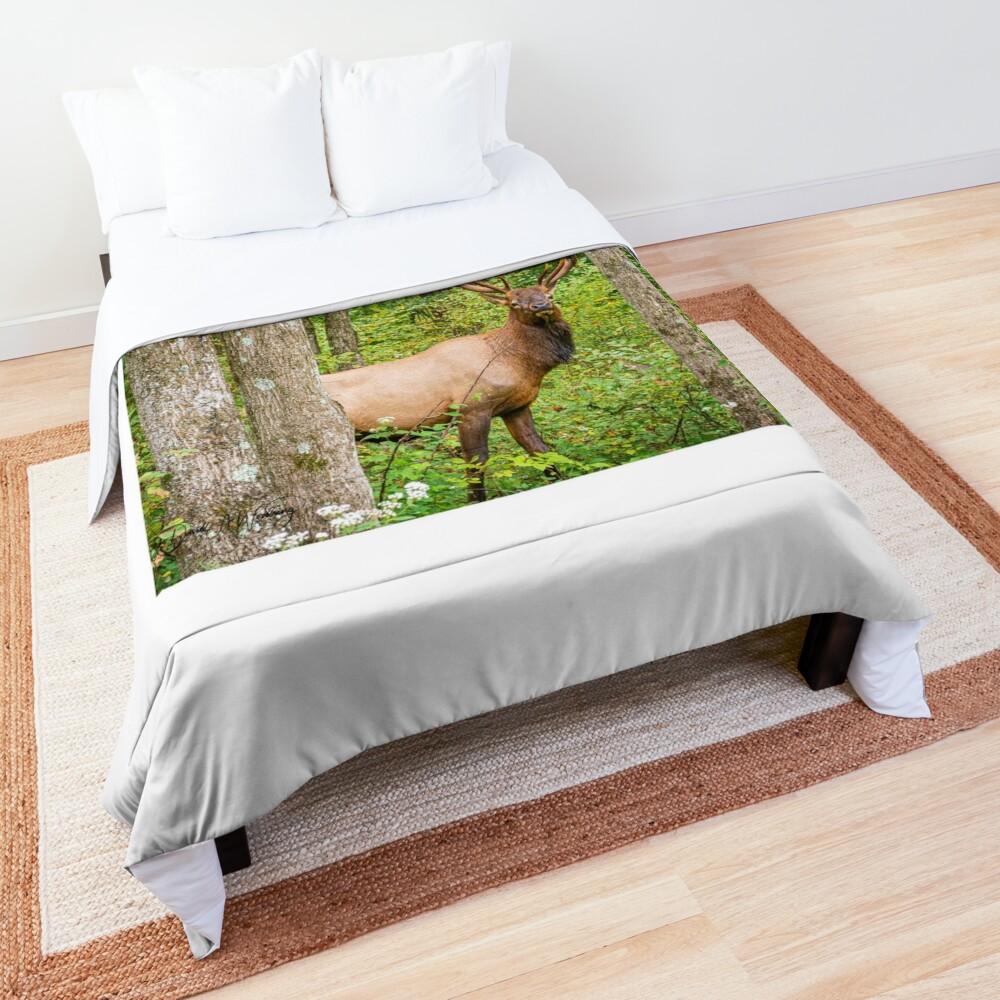 Adult Bull Elk in the Pennsylvania Wilds Comforter