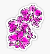 Orchid - 76 Sticker
