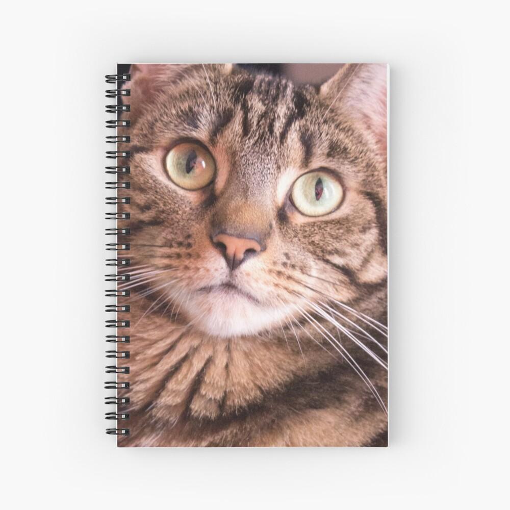 Feline Beauty Spiral Notebook