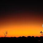 Marla Sunset by Gwynne Brennan