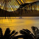 tropical sunset by angelo marasco