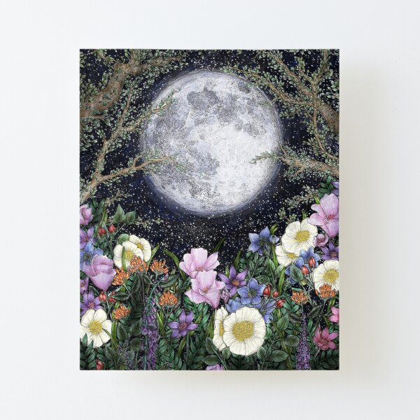 Midnight in the Garden II Canvas Mounted Print