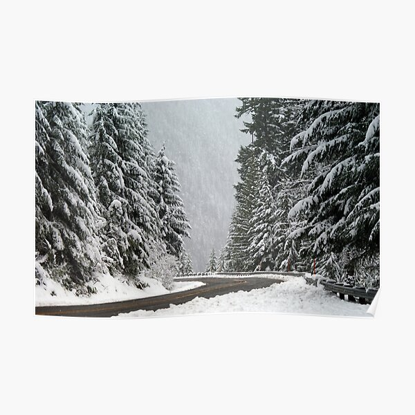 Along Winter Way Poster