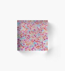 Bloque acrílico Vintage colorful pink teal red floral pattern