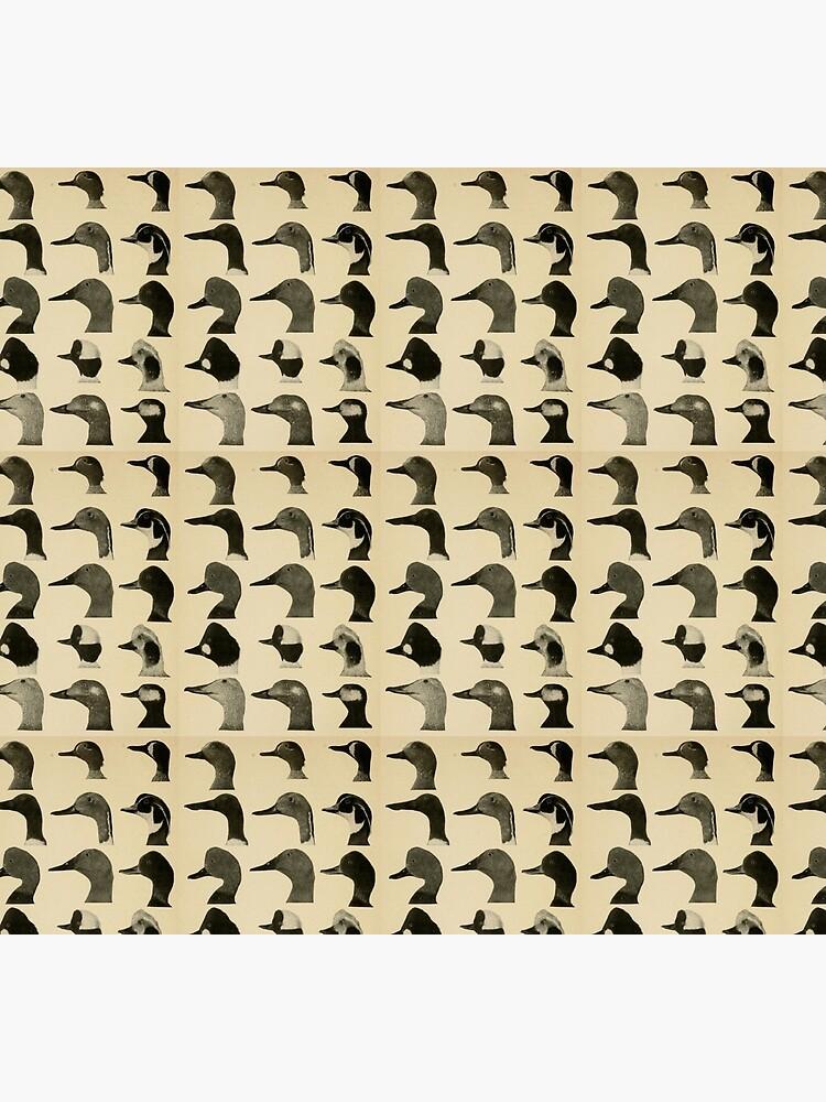 Vintage Duck Heads by bluespecsstudio