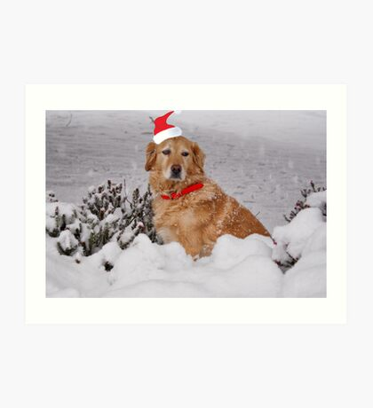 Buster At Christmas  Art Print