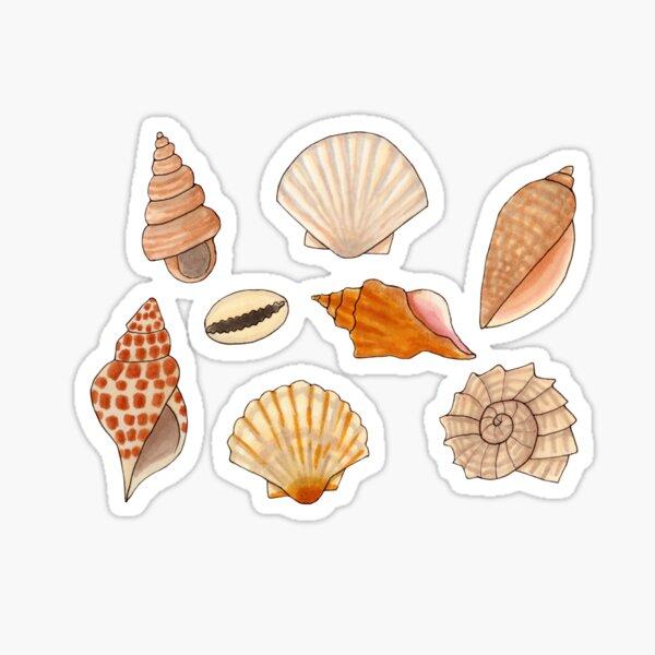 Seashells on the beach Sticker