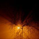 All upon a foggy night... by Richard Pitman