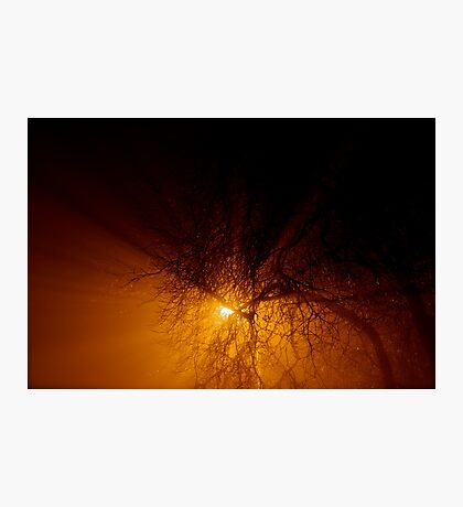 All upon a foggy night... Photographic Print