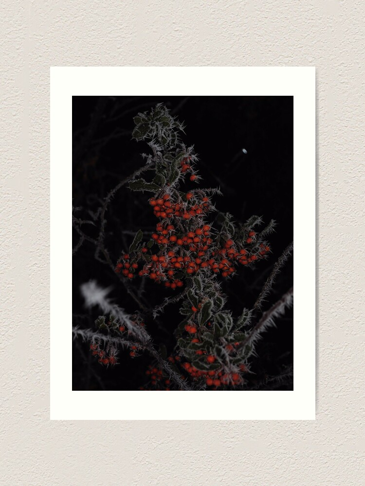 Alternate view of Frozen Berries Art Print