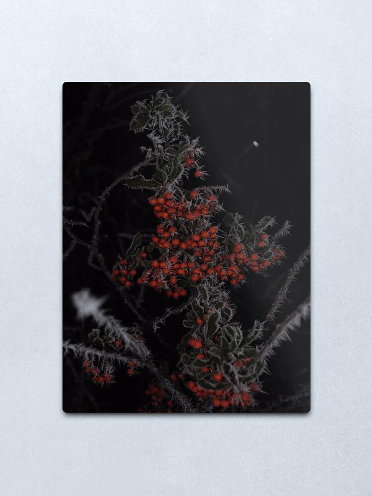 Alternate view of Frozen Berries Metal Print
