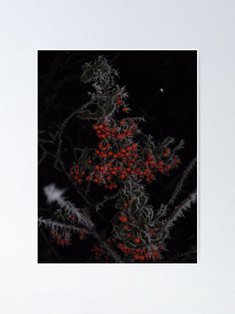 Alternate view of Frozen Berries Poster