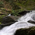 At Roaring Fork Falls by Christine Annas