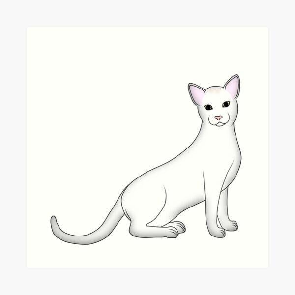 white cat 2 Art Print