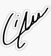 Liam Payne Signature  Sticker