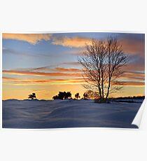 The Setting Sun - Waldridge Fell Country Park. UK Poster
