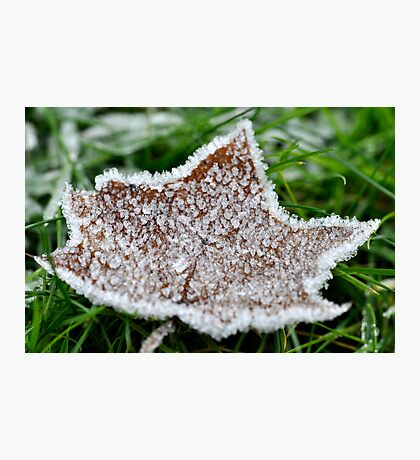 The frozen star Photographic Print