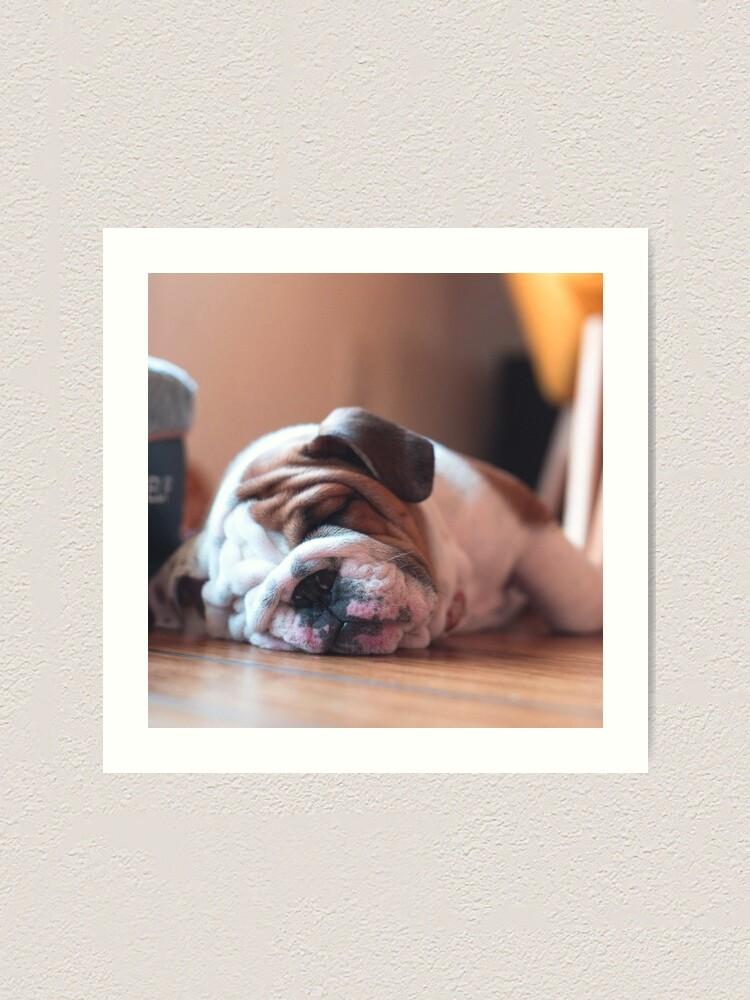 BULLDOG LITTLE GIRL BATHS DOG CHARMING PRINT GREETINGS NOTE CARD