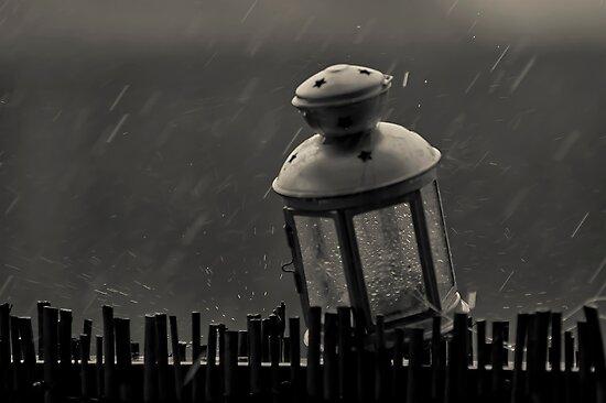 Melbourne's Summer Rain by Paul Louis Villani