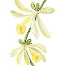 Aquarell Vanille Orchidee Abbildung von blursbyai