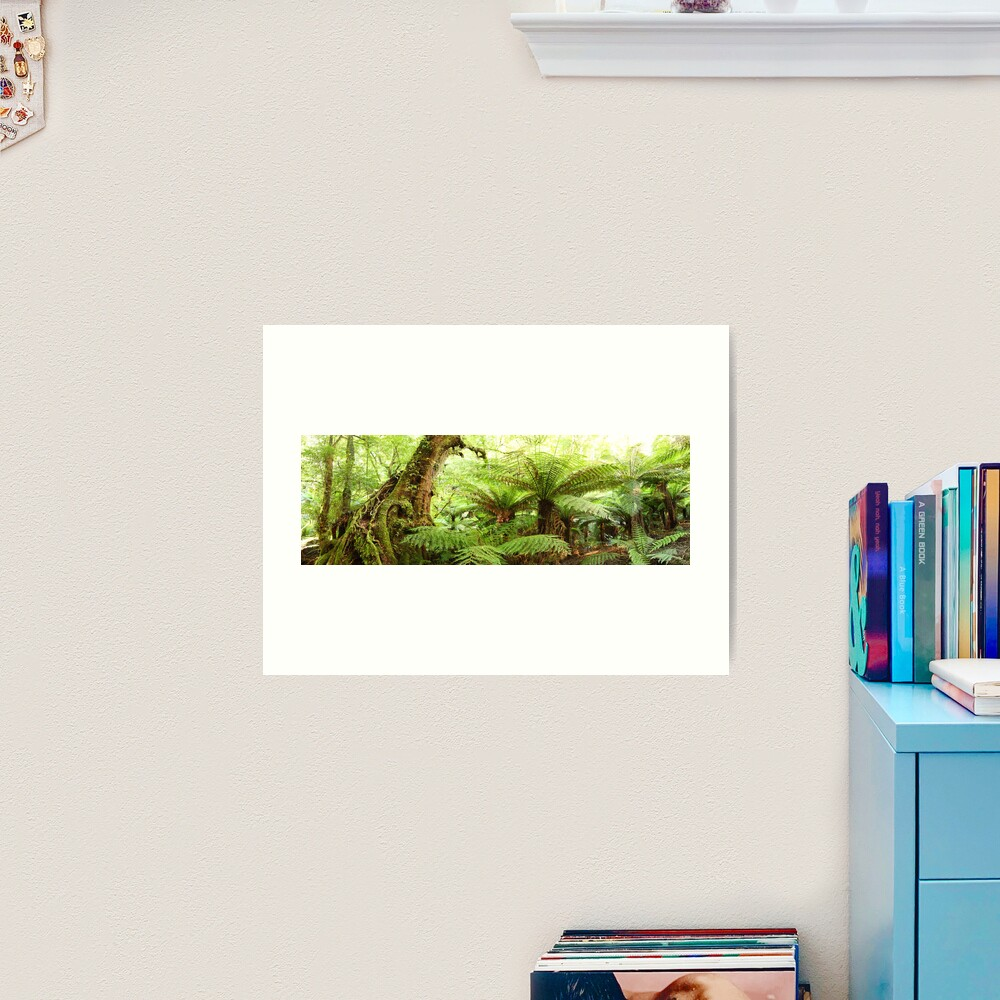 Myrtle Tree, Tarra Bulga National Park, Australia Art Print
