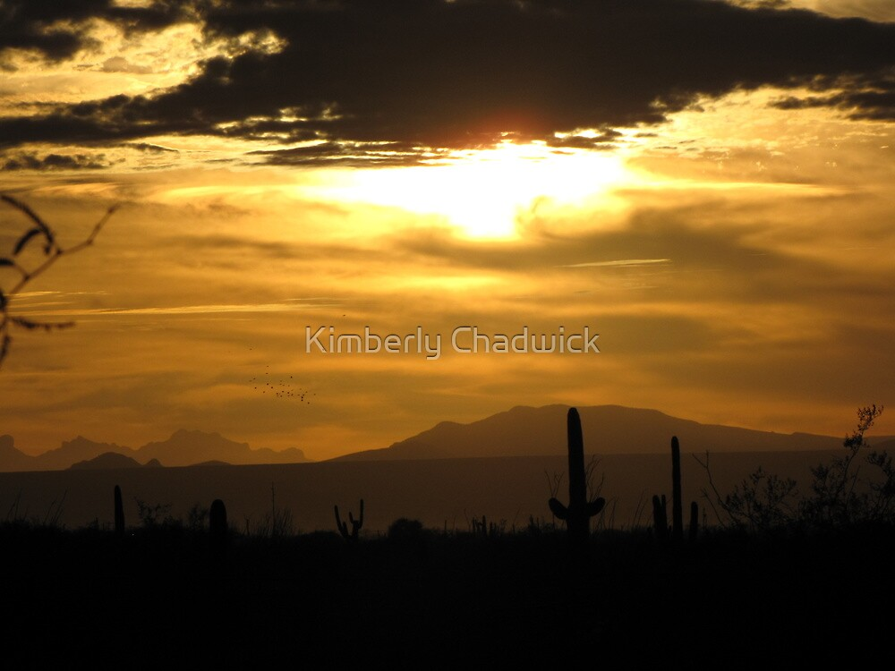 Sahuarita Sunset  by Kimberly Chadwick