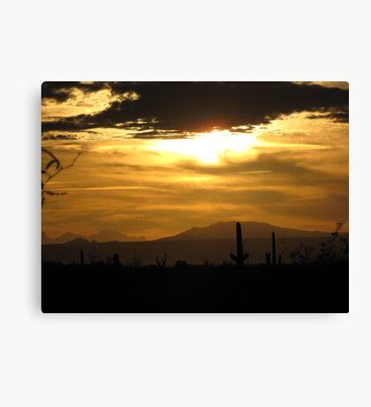 Sahuarita Sunset  Canvas Print