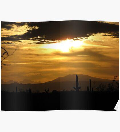 Sahuarita Sunset  Poster