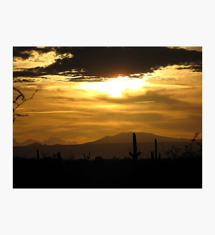Sahuarita Sunset  Photographic Print