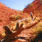 Desert Branch by Malinee Ganahl
