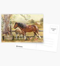 Farmyard Friends Postcards