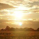 Bradvale sunset by trishringe