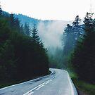 Mysterious Mountain Road by AlexandraStr