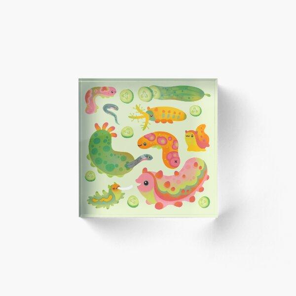 Sea cucumber Acrylic Block