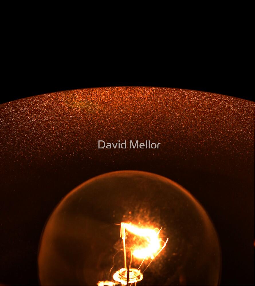 Lamps Glow, Bulbs Grow. by David Mellor