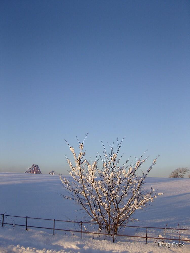 Rail Bridge Winter by DougCook