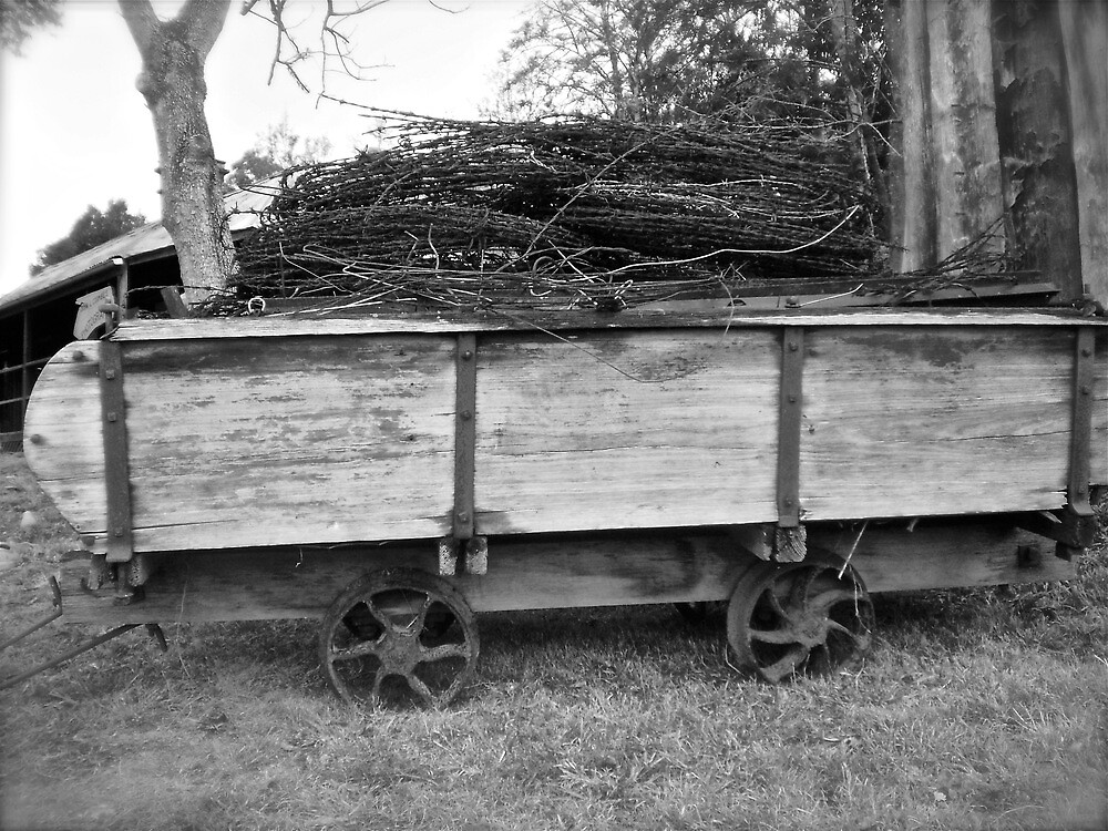 Old Cart by ~  Virginia ~