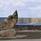 Camaret sur Mer   -  Brittany by 29Breizh33