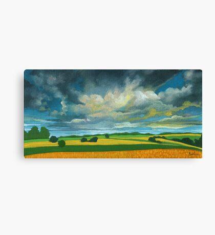 Cornfields - contemporary landscape oil painting Canvas Print