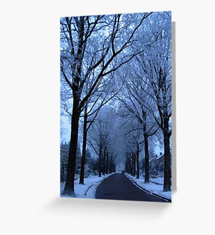 Street and Frozen Trees Greeting Card