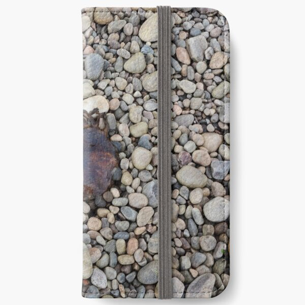 Jellyfish on a bed of pebbles iPhone Wallet