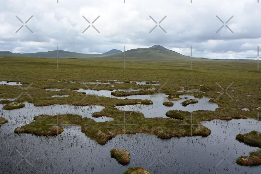 Moody bogland by SiobhanFraser